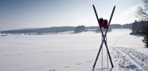 mejores bastones de esqui baratos