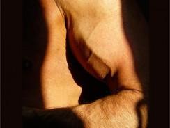 7 consejos útiles para desarrollar tus bíceps