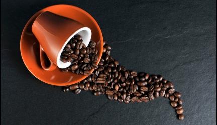 ¿Es bueno el café antes de hacer ejercicio? ¡Te lo contamos!